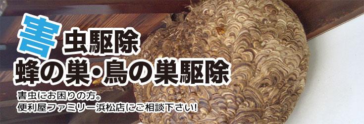 害虫駆除 ・蜂の巣・鳥の巣駆除